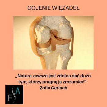 Gojenie_więzadeł